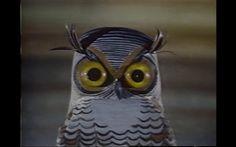 An owl....