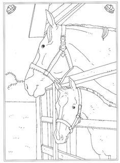 pferde zum ausdrucken mit bildern | bauernhof malvorlagen, malvorlagen pferde, ausmalbilder