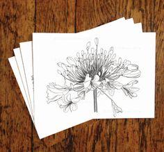 Beautiful Botanical Illustrations, hand drawn by Caroline Bivens. Set of 4 note cards.