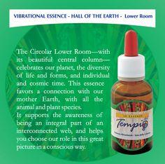 Vibrational essence : Vibrational Essences - Hall of Victory