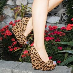 Daydreamer Leopard  from ILoveCuteShoes.com