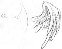 how to draw feathered wings - Google Search