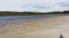 Brown Lake Stradbroke Island, Brown, Beach, Water, Outdoor, Water Water, Aqua, Outdoors, The Beach