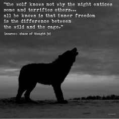 the wolf knows not why the night entices some and terrifies others... all he know is that inner freedom is the difference between the wild and the cage. Chaos of thought