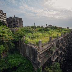 """roof planting #abandoned #廃墟 #urbex"""
