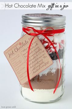 Homemade Hot Chocolate Mix in a Mason Jar - a perfect holiday gift idea! by Ana9
