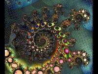fractal by Jack Cooper