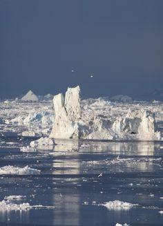 Icebergs in Disko Bay, Greenland. by Richard McManus on 500px