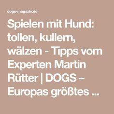 Spielen mit Hund: tollen, kullern, wälzen - Tipps vom Experten Martin Rütter   DOGS – Europas größtes Hundemagazin