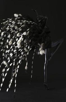 Tenue de scène pour Zizi Jeammaire en 1963.  Photographie de Sophie Carre .  Document Musée Yves Saint Laurent.