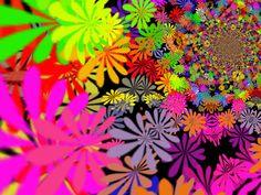 Flower-Power-16.jpg (2000×1500)