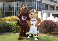 Missouri State University Bears. Boomer and Growl Bear. In the 1906 school year, before the first permanent building (Carrington Hall) was even constructed. A joint committee of faculty and students decided on the colors of maroon and white to represent the University. The same committee also selected the Bear as the official school mascot, basing their choice on the design of the state seal of Missouri.