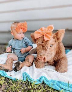 Baby Farm Animals, Cute Wild Animals, Baby Cows, Baby Animals Pictures, Cute Animal Photos, Cute Little Animals, Cute Baby Cow, Baby Kostüm, Cute Cows