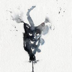 Don James's cat by Blule