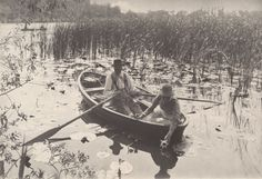 Peter Henry Emerson Gathering Water Lilies print for sale. Shop for Peter Henry Emerson Gathering Water Lilies painting and frame at discount price, ships in 24 hours. Emerson, History Of Photography, Vintage Photography, White Photography, Straight Photography, 6 Photos, Pictures, Norfolk Broads, Norfolk England