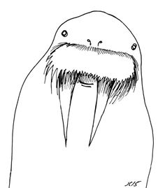 Can you draw a walrus?