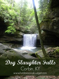 Dog Slaughter Falls is one of the most beautiful, scenic hiking trails in central Kentucky.  Located near Cumberland Falls, this trail has it all!  Kentucky Tourism