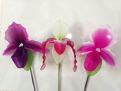 Fleur en collants