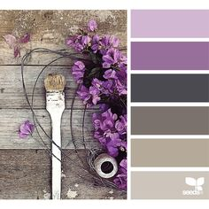 design seeds   search   for all who ♥ color ❤ liked on Polyvore featuring design seeds, filler and backgrounds