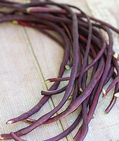 Bean, Red Podded Asparagus - Pole Beans at Burpee.com