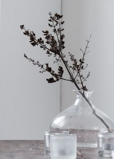 Glass Vase, Home Decor, Decoration Home, Room Decor, Home Interior Design, Home Decoration, Interior Design