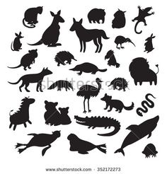 Australian Animals Silhouettes Isolated On White Stock Vector (Royalty Free) 352172273 Animal Silhouette, Australian Animals, White Stock Image, Continents, Silhouettes, Preschool, Royalty Free Stock Photos, Big, Stencil