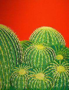 barrel cactus                                                                                                                                                                                 More