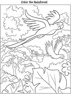 Check Out These Six Coloring Pages A Free Preview Of Dover Publication Kooky Birds Book