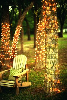 wrap the trees surrounded the venue to have fully lit perimiter of the party