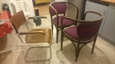 Gustav Siegel - original condition (contact me through my FB page, same as name of this folder) Mid-century Modern, Dining Chairs, Mid Century, The Originals, Furniture, Design, Home Decor, Dinner Chairs, Homemade Home Decor