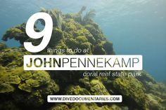 9 Things to do at John Pennekamp Coral Reef State Park