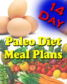 14 Day Paleo Diet Meal Plan