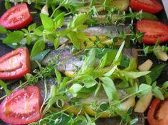 Herb garlic grilled trout