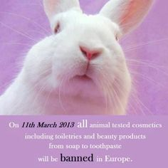 Europe banned all testing on animals as of this week! Ava has NEVER tested on animals!!