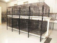 FlushKleen Rabbit Cage Rack System, Rabbit Kennel Cages, Rabbit Kennels, Rabbit Kennel - Rabbit Cages, Rabbit Hutches
