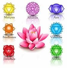 Buy Lotus and Seven Chakras by Ennessy on GraphicRiver. lotus and seven chakras 7 Chakras, Chakra Tattoo, Lotus Mandala, Lotus Flower, Lotus Tattoo, Mandala Tattoo, Chakra Symbole, Lotus Vector, Yoga Box