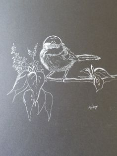White pencil on black paper