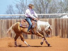 Don't let an increase or decrease in speed at the lope put you in the penalty box. Learn how to prepare your horse for speed transitions at home so you can show mastery of them when it counts. Work Horses, Cute Horses, Show Horses, Beautiful Horses, Reining Horses, Palamino Horse, Dressage, Horse Riding Tips, Horse Tips