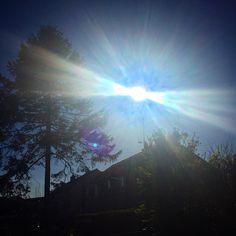 Sun Burst x