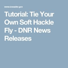 Tutorial: Tie Your Own Soft Hackle Fly - DNR News Releases