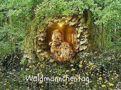 Heute ist: Waldmännchentag  #Heute #Tag #Welttag #Today #Day #SpecialDay #Worldday #waldmännchen #wald