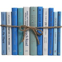 Booth & Williams Authentic Decorative Books - By Color Modern Ocean ColorPak (1 Linear Foot, 10-12 Books)