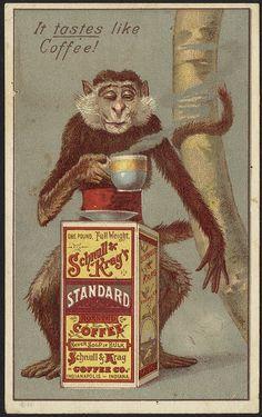 It taste like coffee! Schnull & Kreg's Standard Roasted Coffee [front]