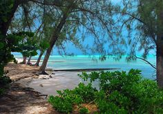 Rum Point Grand Cayman Rum Point Grand Cayman, Family Cruise, Tropical Beaches, Cruise Travel, Cozumel, Cayman Islands, Amazing Adventures, Dream Vacations, Beautiful Landscapes