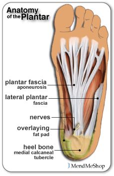 Plantar fasciitis - This link provides both information and one of the many products that can be used to wrap the foot to help reduce & relieve foot pain.  Taping the foot is another option, as well as wearing HTP heel seats - which can be found on other websites.