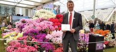 David Millais, Chairman of the RHS Rhododendron, Camellia and Magnolia Group, in… Chelsea 2016, Garden Show, Buy Plants, Chelsea Flower Show, Camellia, David, Nursery, Magnolia, Flowers