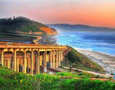 Torrey Pines State Beach | San Diego, CA