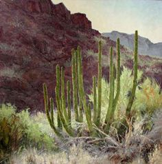 Afternoon Tunes - Original Oil Painting by Carole Cooke - 24 x 24 - $7,200  Available for Purchase at JBArtConsultants.com Western Art, Fine Art Gallery, Cactus Plants, Sculpture, Artist, Painting, Oil, Art Gallery, Cacti