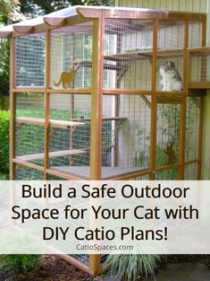 It's Easy to Build a DIY Catio for Your Cat! – Catio Spaces playground ou… It's Easy to Build a DIY Catio for Your Cat! Diy Cat Enclosure, Outdoor Cat Enclosure, Cage Chat, Catio Ideas For Cats, Cat Cages, Cat Playground, Outdoor Cats, Outdoor Cat House Diy, Outdoor Cat Cage
