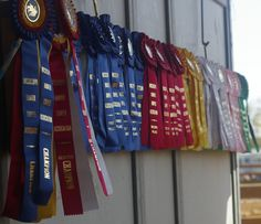 ribbons-from-horse-show.jpg (900×776)